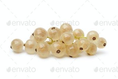 Fresh white currants