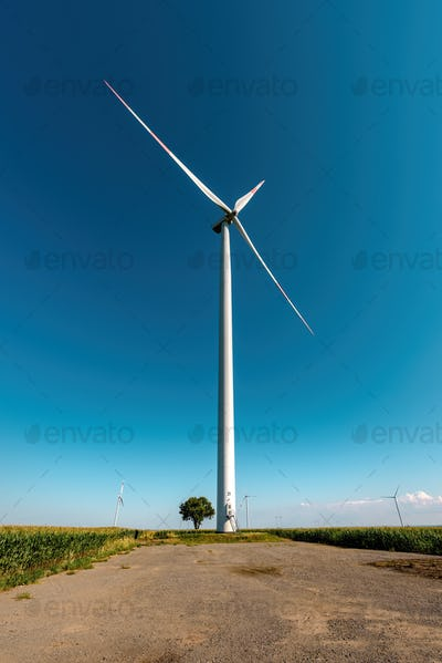 Large with turbine and small tree in field