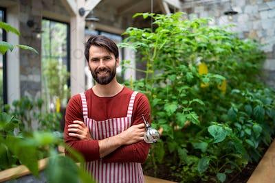 Portrait of man gardener standing in greenhouse, looking at camera