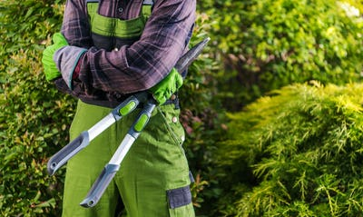 Professional Gardener with Large Scissors In His Hands