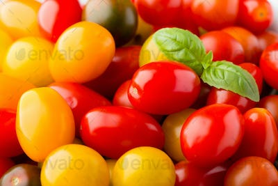 Tomatoes on the gray background.