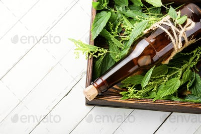 Nettle in herbal medicine