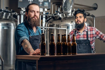 Two men presenting craft beer in the microbrewery.