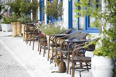 Cozy terrace on a greek street.