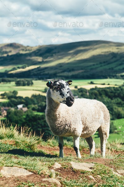 Edale staycation during summer