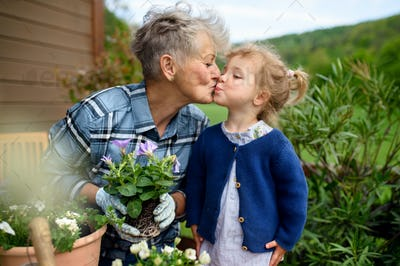 Senior grandmother with small granddaughter gardening on balcony in summer