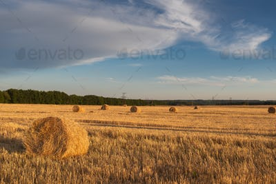 Sunset on the field with haystack