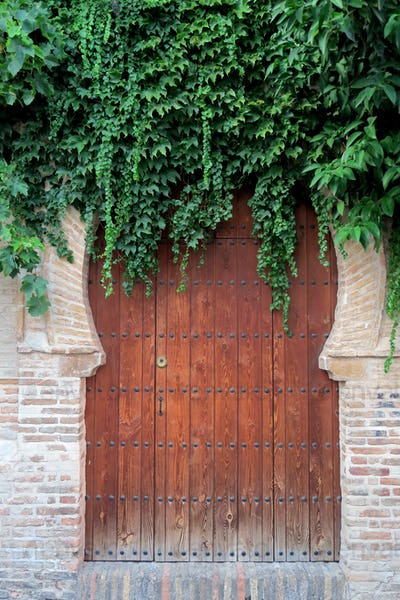Arab door full of vegetation of an old house