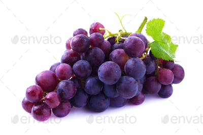 Ripe grapes isolated.