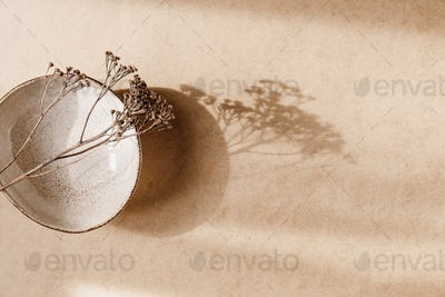 Minimalist ceramic bowl with dry plant over kraft paper background