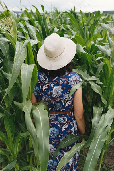 Stylish young woman in blue vintage dress and hat walking in green corn field