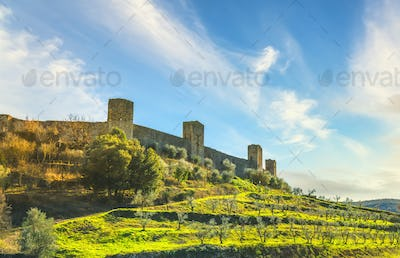Monteriggioni medieval fortified village and olive trees, Siena, Tuscany. Italy