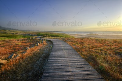 Wooden walkway parallel to the beaches