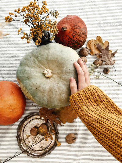 Hand in yellow sweater holding pumpkin and nuts, yellow flowers, fall leaves on rustic table