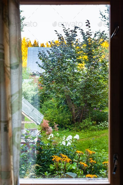 view of yard with well through window in cottage