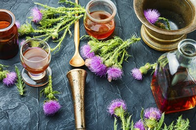 Silybum medical herbs