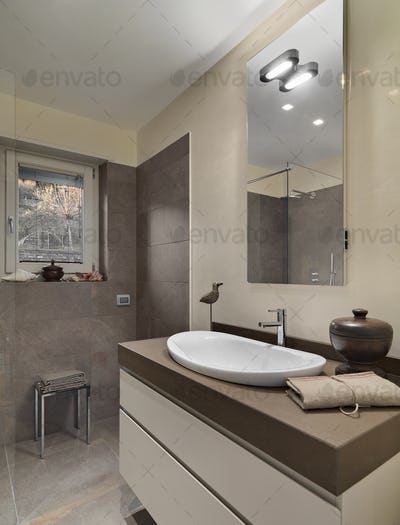 Modern Bathroom Interior with Shower Box