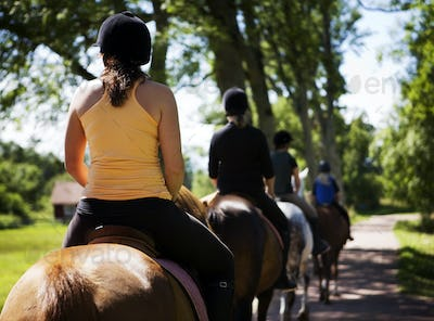 Rear view of people horseback riding on sunny day