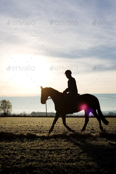 Side view of silhouette jockey sitting on horse at field