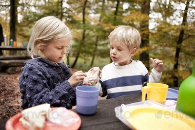 Brother and sister having breakfast at picnic table in forest