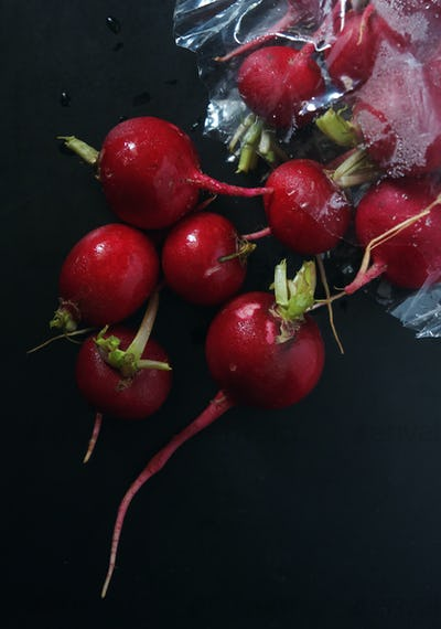 Red radish and plastic bag from a retail shop