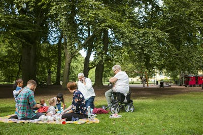 Family with children (2-5 months, 6-11 months, 2-3, 6-7) having picnic in park