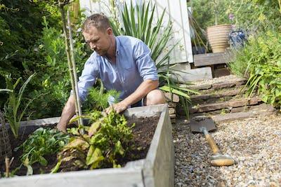 Man working in garden on sunny day