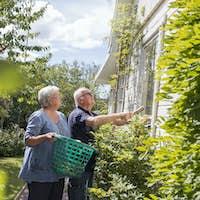 Senior woman and man working in garden