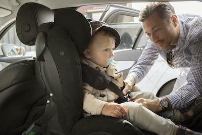Father fastening son's (18-23 months) seat belt