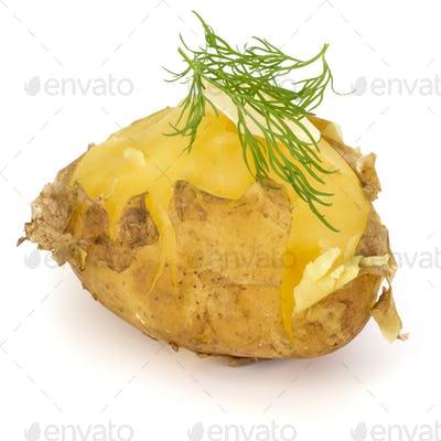 one boiled peeled potato with dill and butter isolated on white background cutout