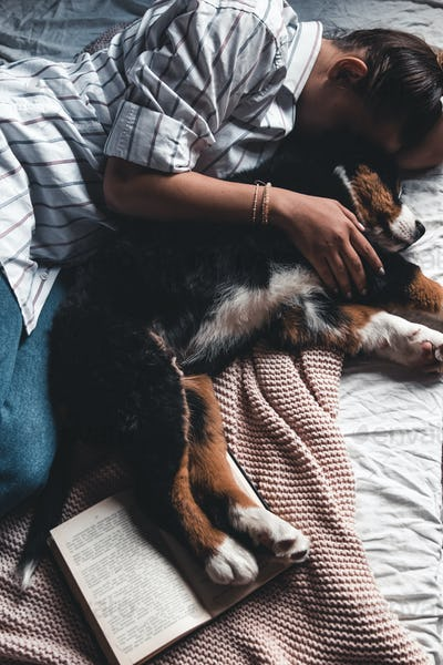 Young woman is lying and sleeping with Bernese Mountain Dog in bed