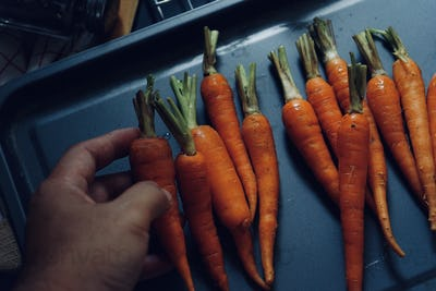 Hand of chef placing the carrot on the baking tray