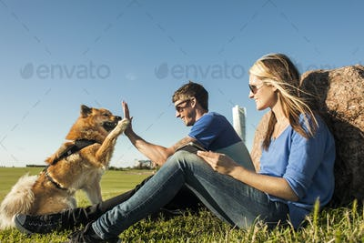 Happy couple playing with dog at park against clear blue sky