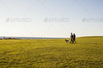 Couple with dog walking on grassy landscape against clear sky