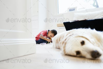 Boy studying in living room with dog relaxing in foreground