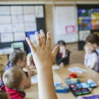 Cropped image of boy raising hand in classroom