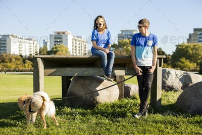 Couple with dog at park in city on sunny day