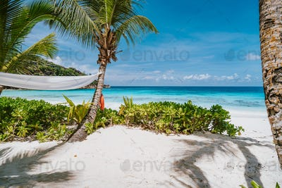 Tropical beach at Mahe island, Seychelles. Travel vacation background