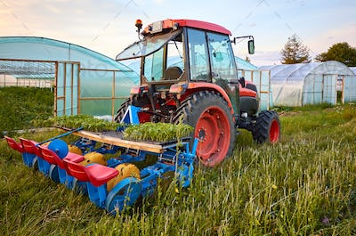 Manual seedling planter mounted to a tractor.