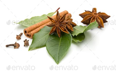 Various spices isolated over white background. Bay leaves, cinnamon and anise stars..