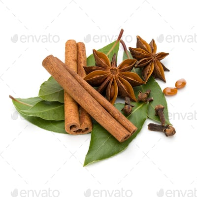 Various spices isolated on white background. Bay leaves, cinnamon and anise stars.