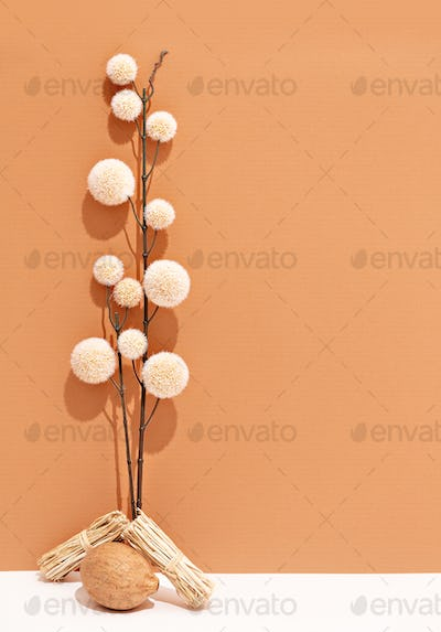 Autumn flowers. Fall  minimal concept. Still life  brown beige colours trend