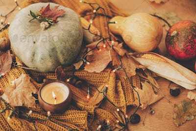 Pumpkin, autumn leaves, spices and candle on cozy knitted sweater