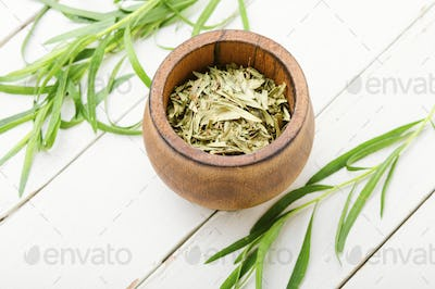 Fresh and dry tarragon herbs