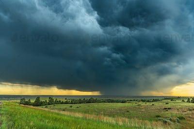 Rainstorm over Grassy Field