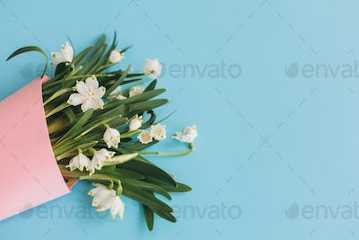 White spring flowers in pink cone on blue background flat lay