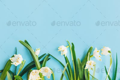 Floral trendy border of fresh spring flowers with copy space
