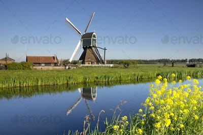 The Wingerdse Molen