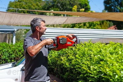 A man trimming a hedge in a backyard