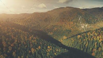 Autumn dense forest mountain scenery aerial view